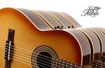 guitares GODIN LA PATRIE